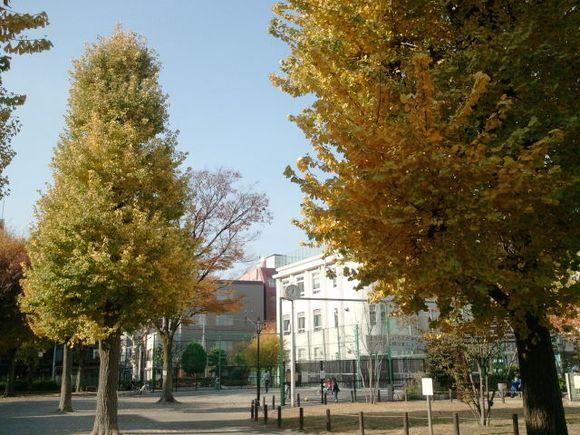 2010-11-28 12.36.14.jpg